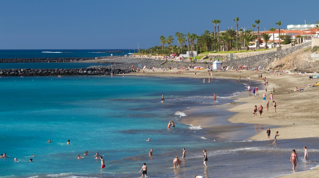 Adeje som omfatter en sandstrand, svømning og udsigt over landskaber