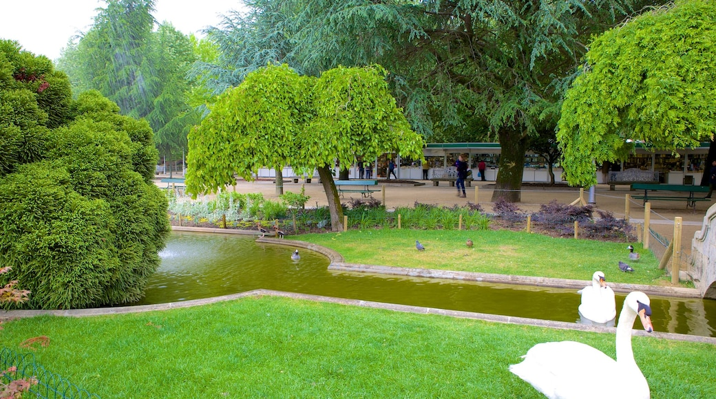 Alameda Park which includes a garden, bird life and a pond