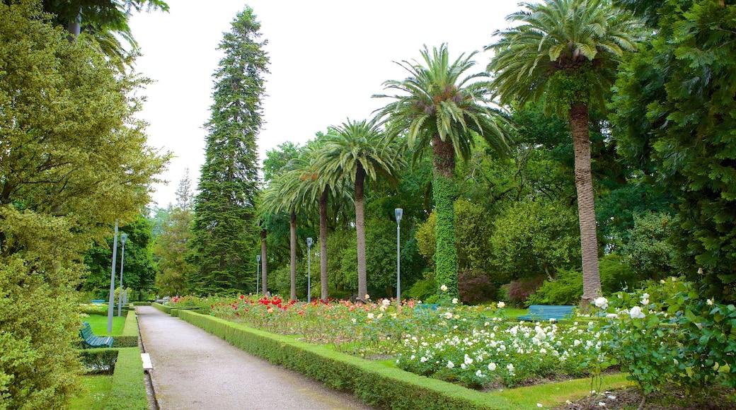 Alameda Park which includes a garden