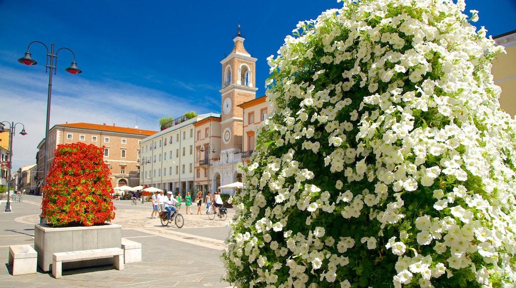 Piazza Tre Martiri mostrando strade, fiori di campo e fiori