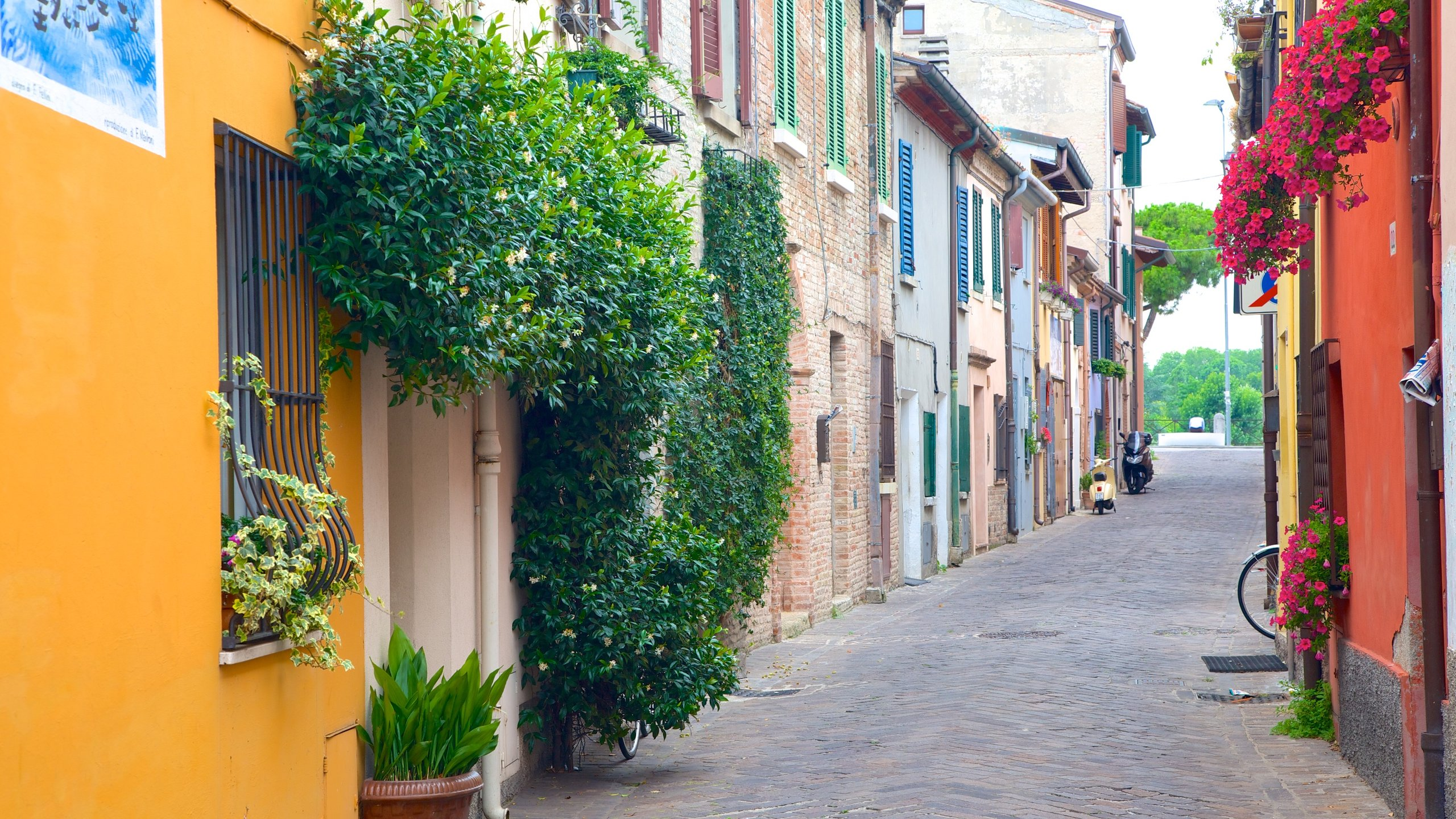 Province of Forli-Cesena, Emilia-Romagna, Italy