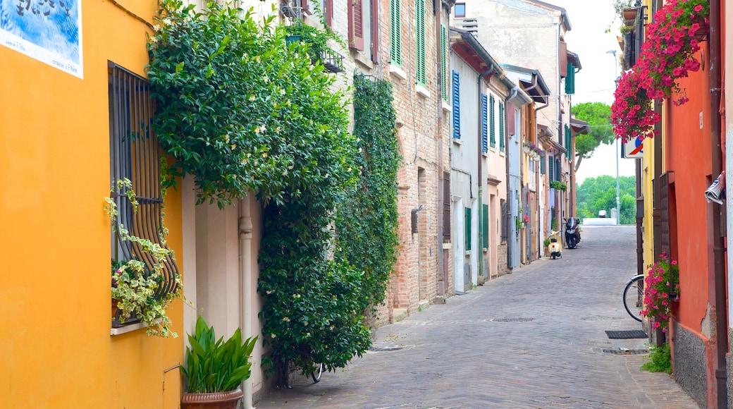 Rimini montrant scènes de rue