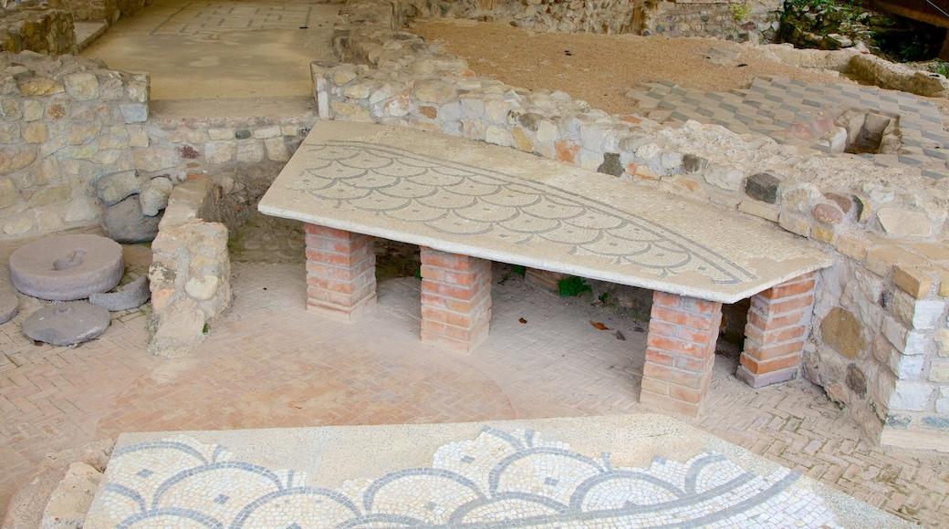 Villa Romana mostrando oggetti d\'epoca e rovine