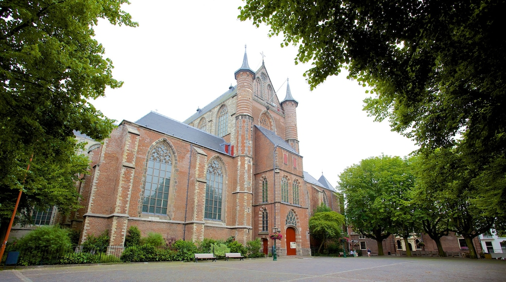Pieterskerk which includes a church or cathedral and religious elements
