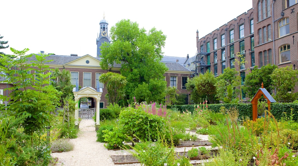 Hortus Botanicus which includes a garden, heritage architecture and flowers