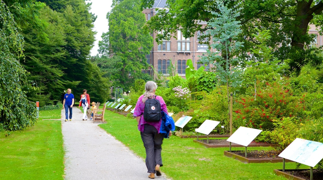 Hortus Botanicus showing hiking or walking and a park as well as a small group of people