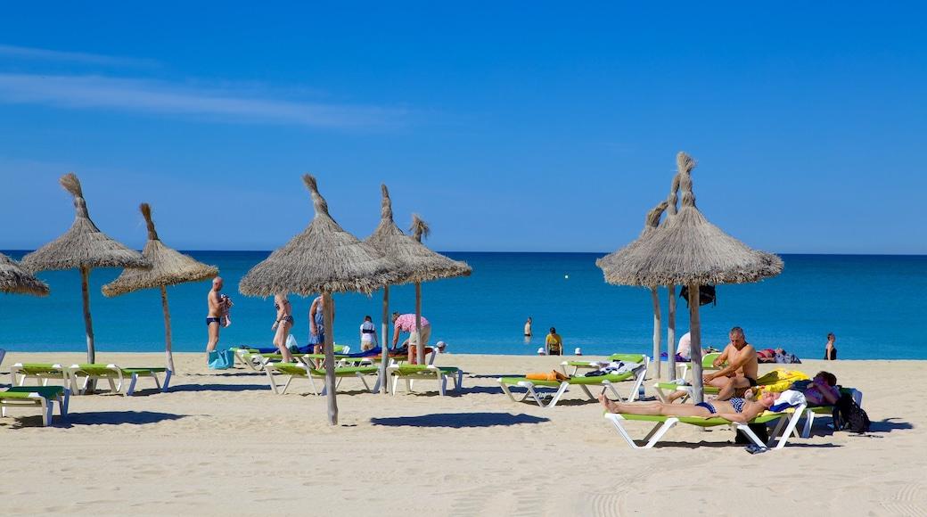 Palma de Mallorca que incluye una playa y también un grupo grande de personas