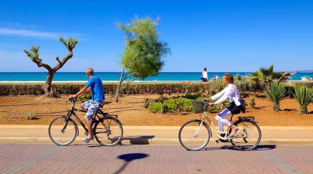 Palma de Mallorca que incluye ciclismo y también una pareja