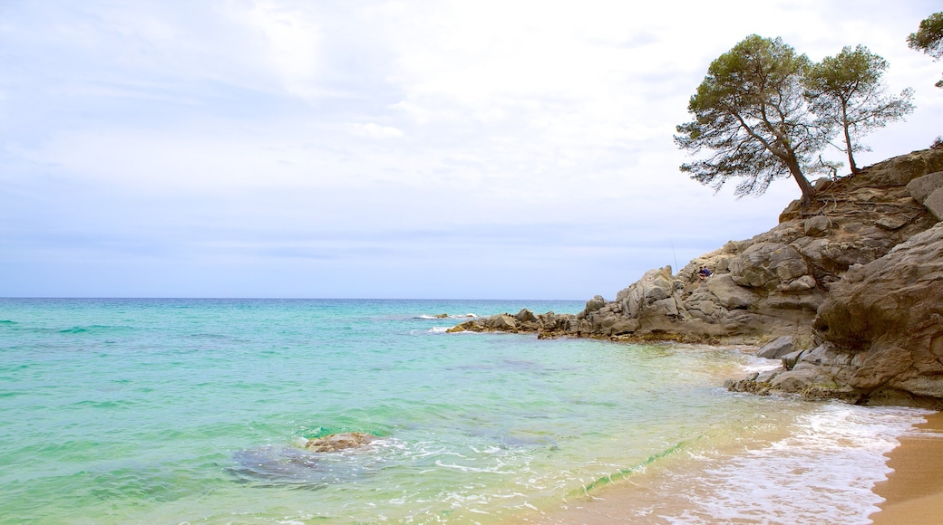 Strand van Treumal bevat een strand, ruige kustlijn en algemene kustgezichten