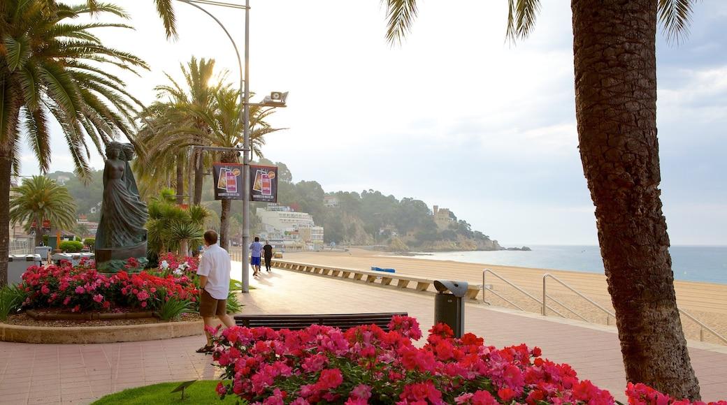 Plage de Lloret de Mar montrant vues littorales, fleurs et scènes de rue
