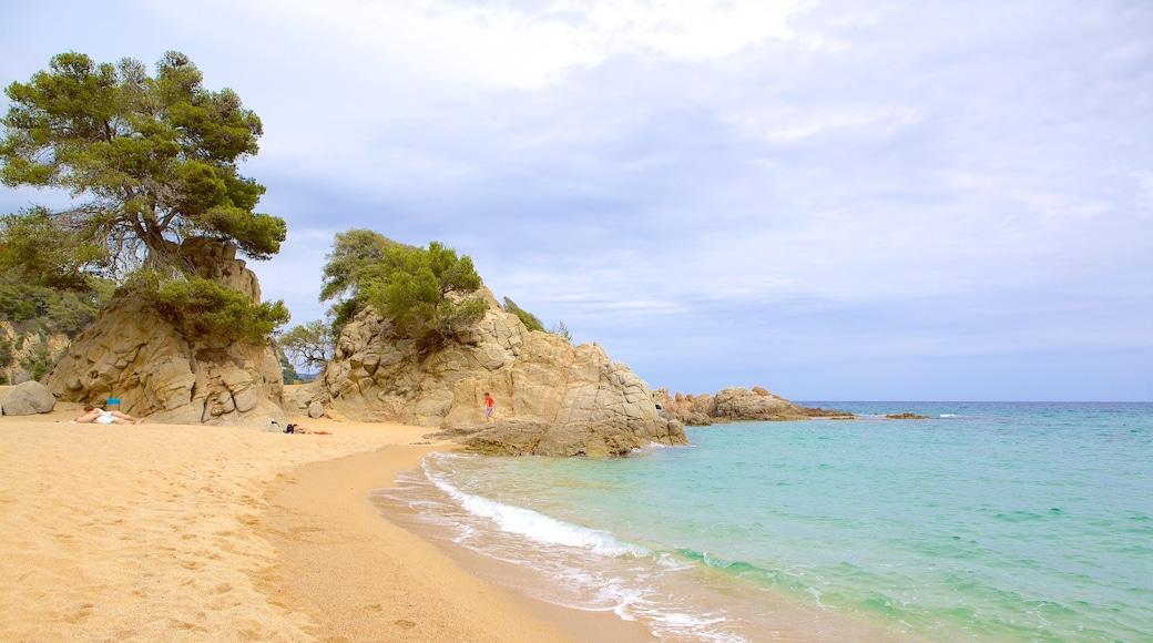 Strand van Treumal inclusief een strand