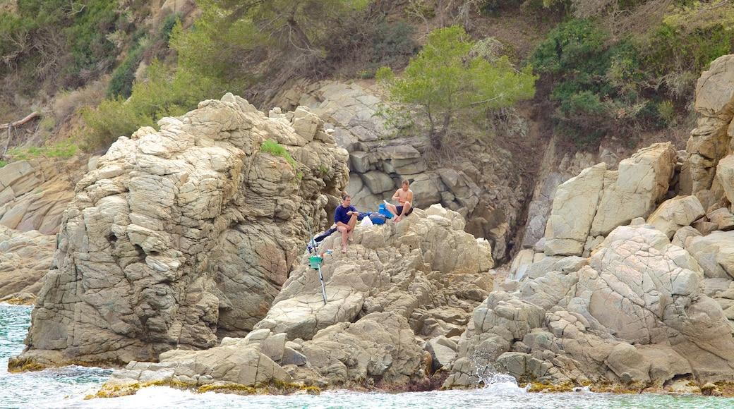 Strand van Treumal bevat algemene kustgezichten en ruige kustlijn en ook een klein groepje mensen