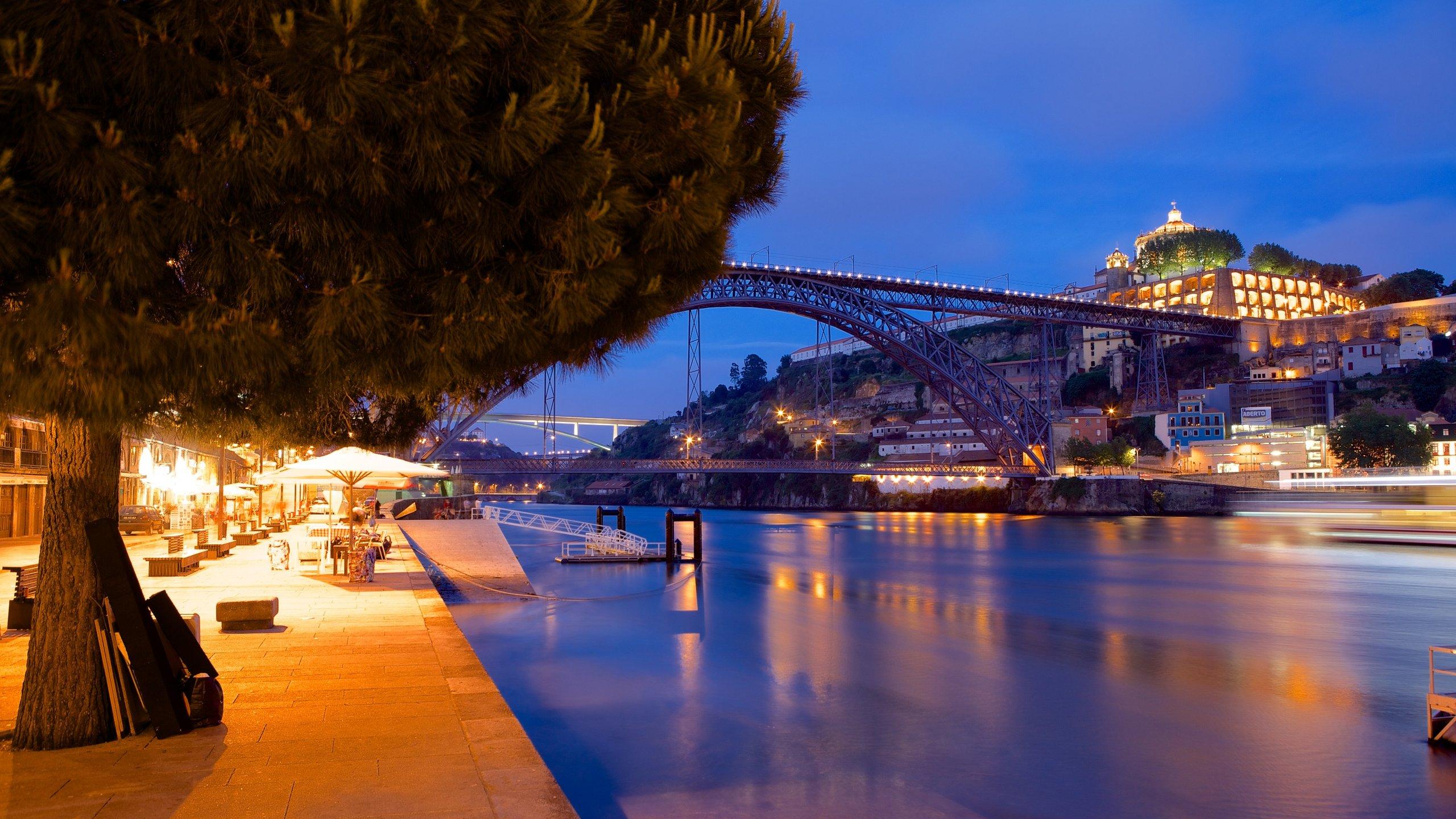 Ponte Dom Luís I caracterizando uma ponte, cenas de rua e cenas noturnas