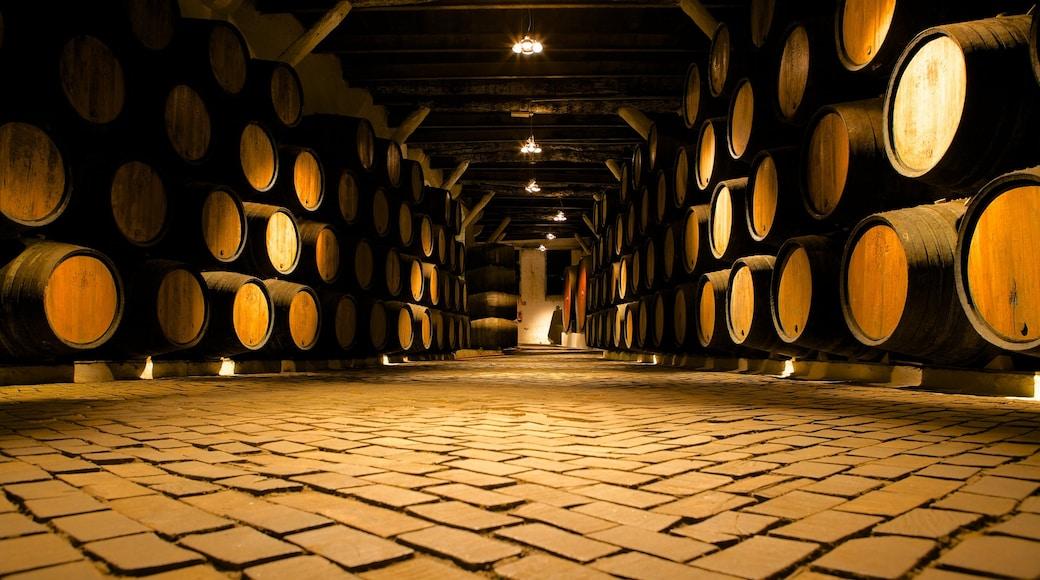 Sandeman Cellars som inkluderer innendørs
