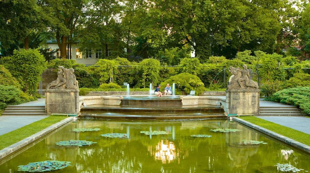 Bern Rose Garden mostrando uma fonte, um lago e um jardim