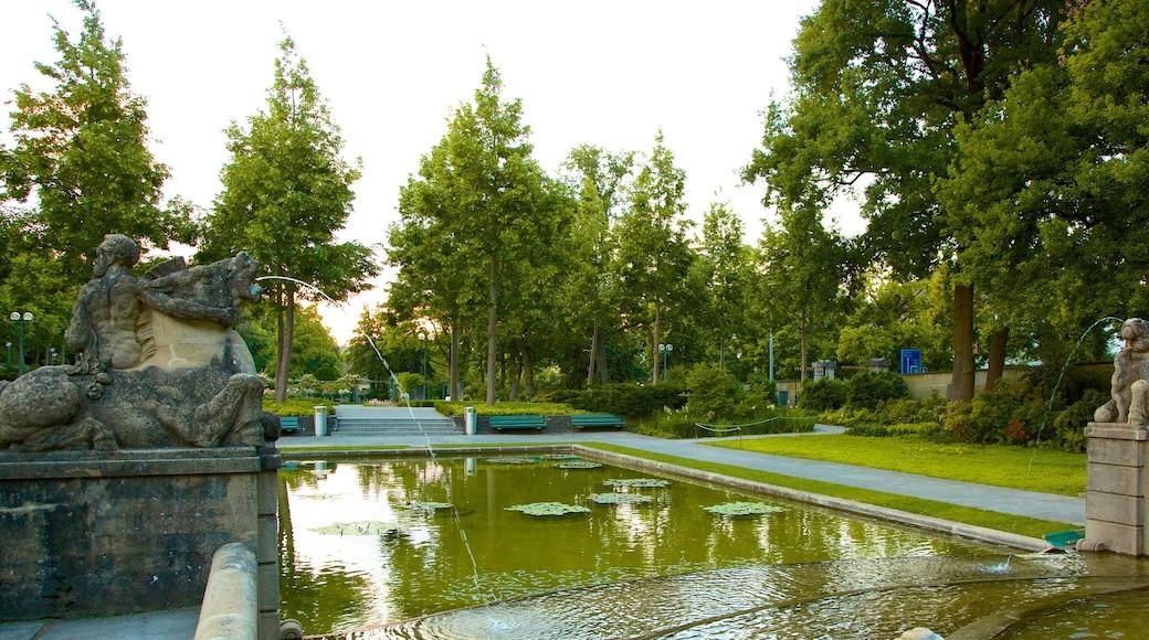 Bern Rose Garden que inclui uma fonte, um lago e um parque