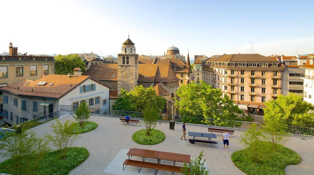 Geneva showing a garden and a city