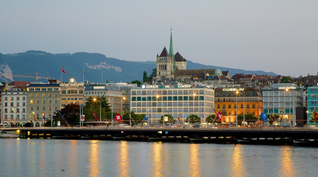 Saint-Pierre Cathedral showing a lake or waterhole and central business district