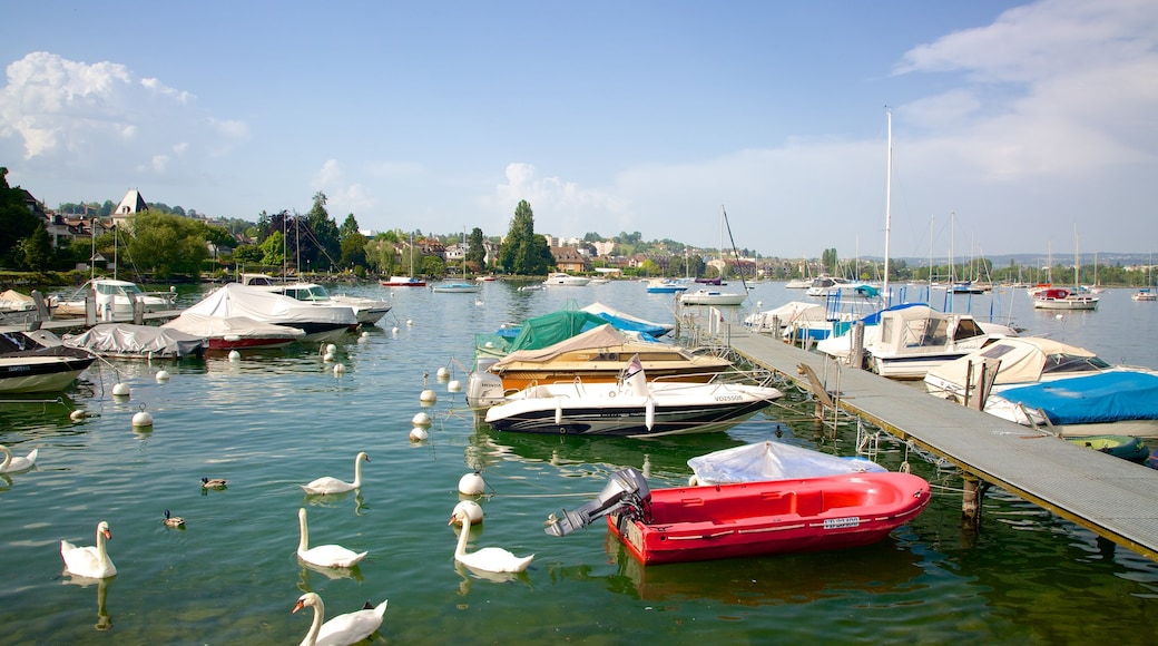 Morges featuring a bay or harbour, a lake or waterhole and boating