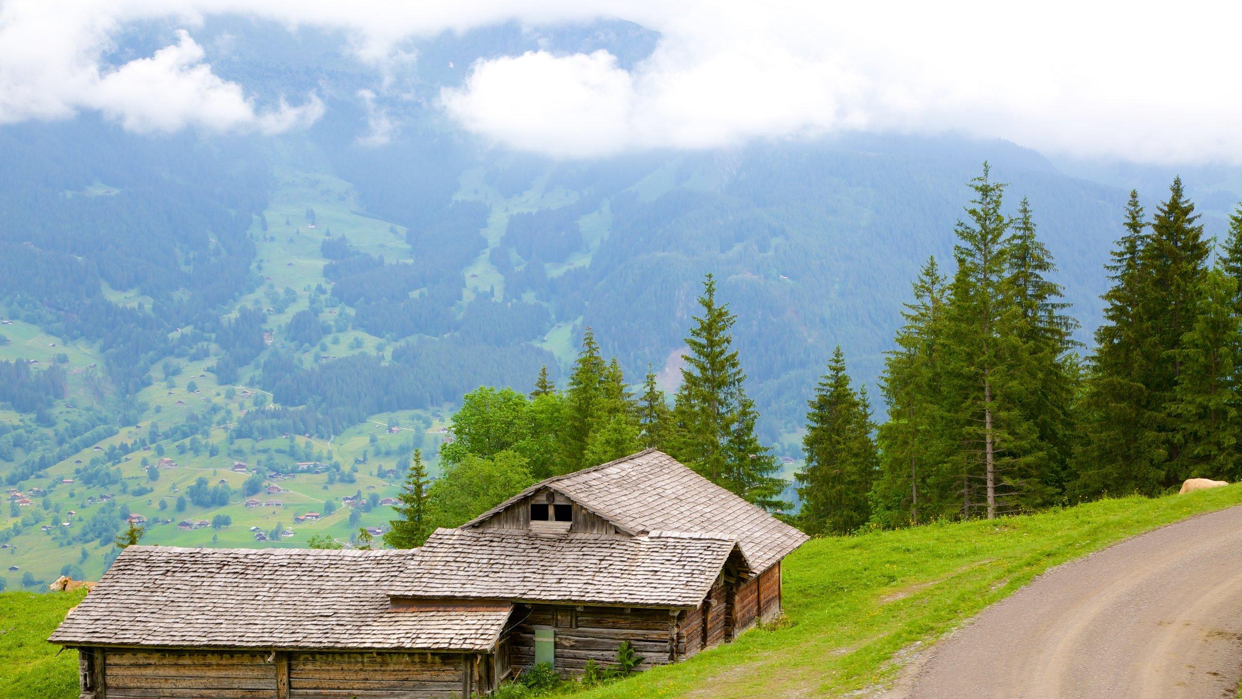Interlaken-Oberhasli District, Canton of Bern, Switzerland