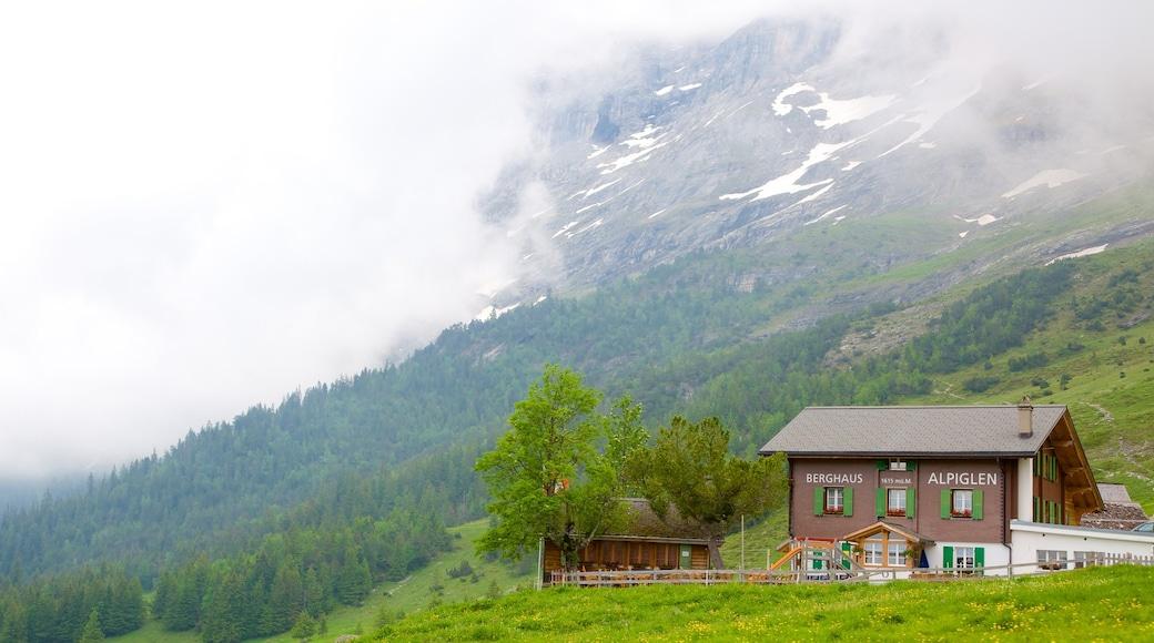 Grindelwald mettant en vedette maison, brume ou brouillard et ferme