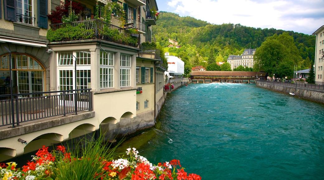 Interlaken ofreciendo un río o arroyo, una casa y flores