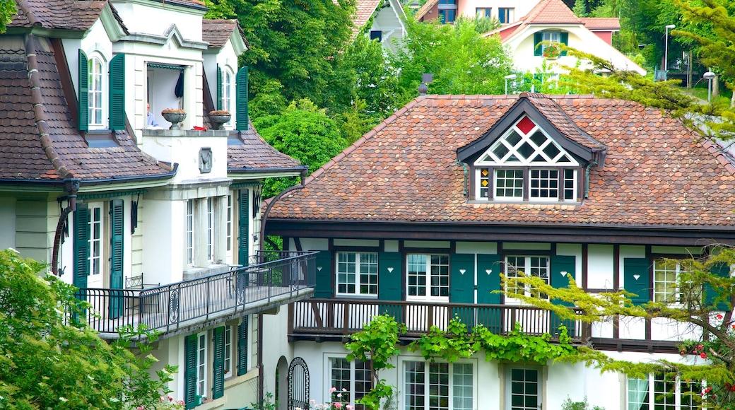 Interlaken caracterizando uma casa e arquitetura de patrimônio