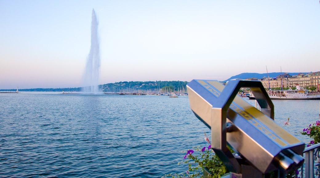 Fuente Jet d\'Eau que incluye una fuente, vistas y un lago o laguna