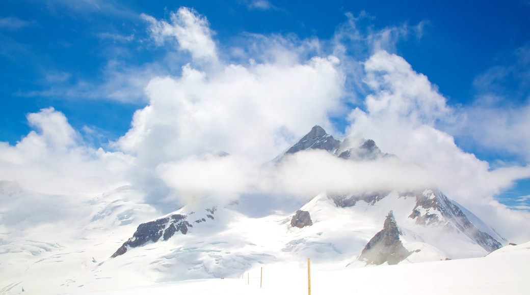 Jungfraujoch showing snow and mountains