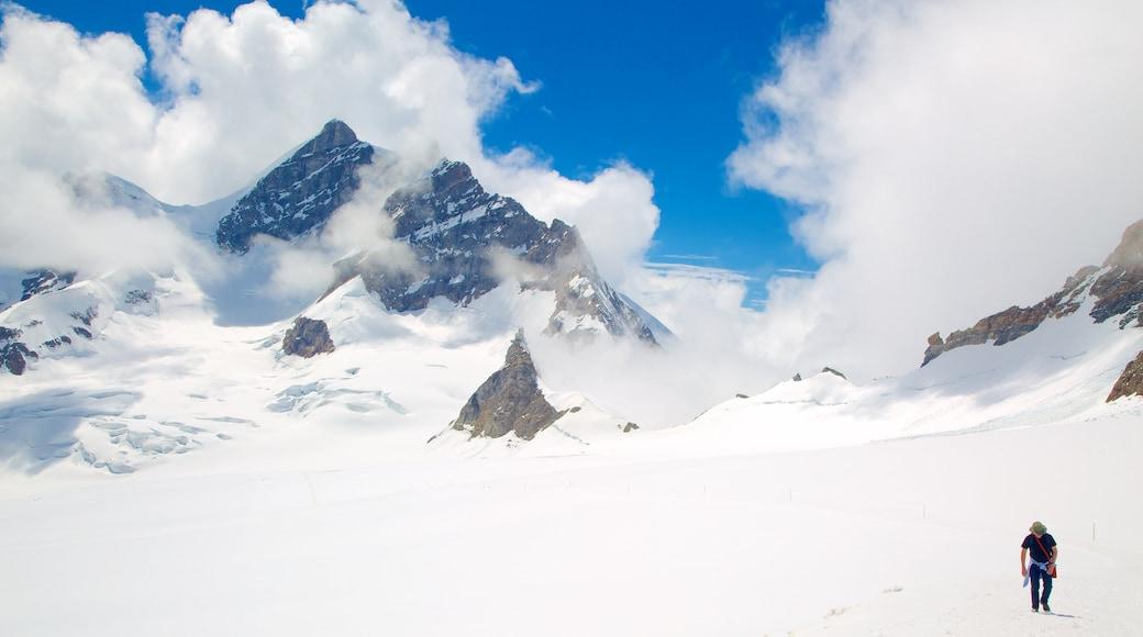 Jungfraujoch que incluye montañas, niebla y senderismo o caminatas