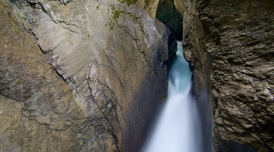 Trummelbach Falls showing a waterfall and a gorge or canyon