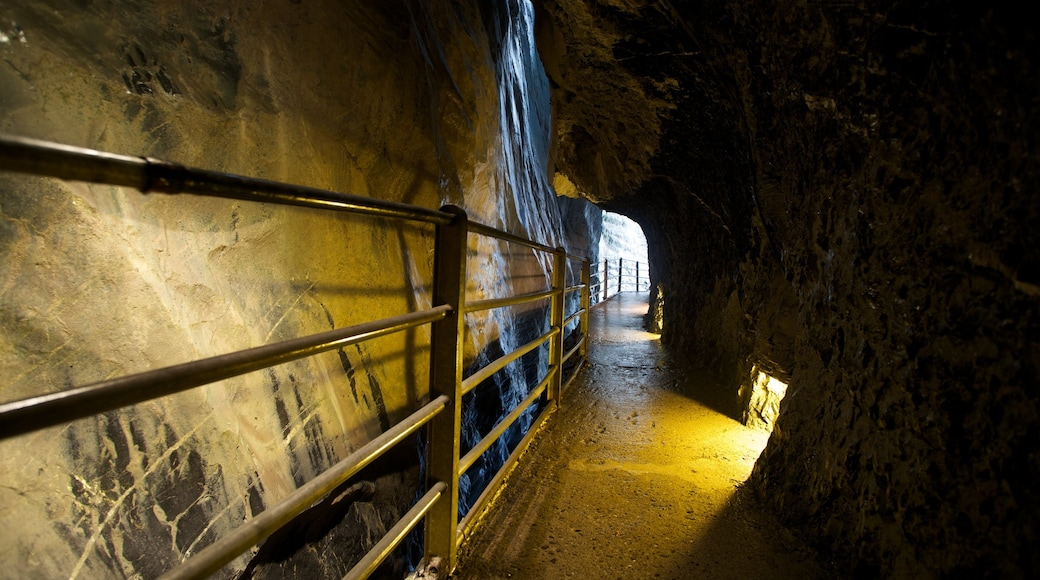 Trummelbach Falls featuring caves and interior views