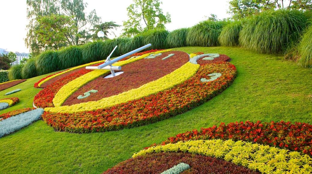 L\'horloge fleurie inclusief bloemen, kunst in de open lucht en een tuin
