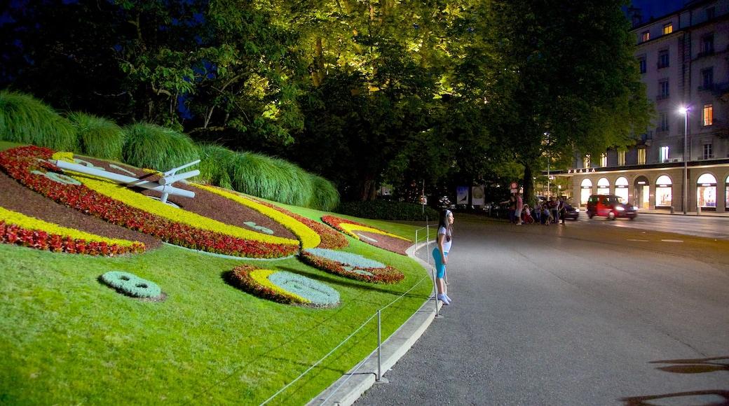 L\'horloge fleurie toont nachtleven, straten en bloemen