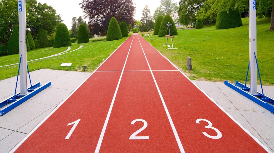 Musée olympique montrant parc