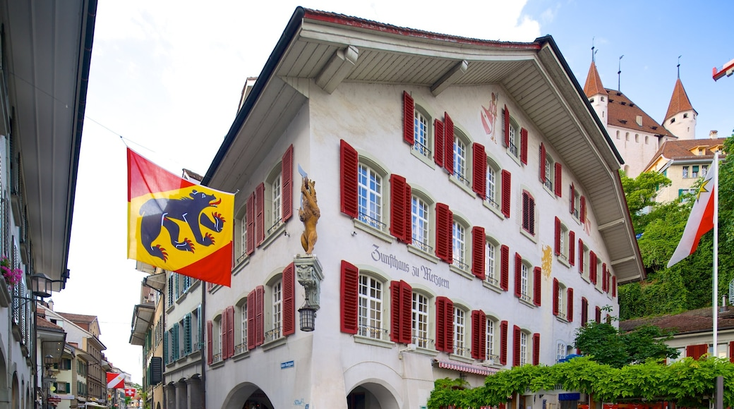 Thun Castle showing street scenes