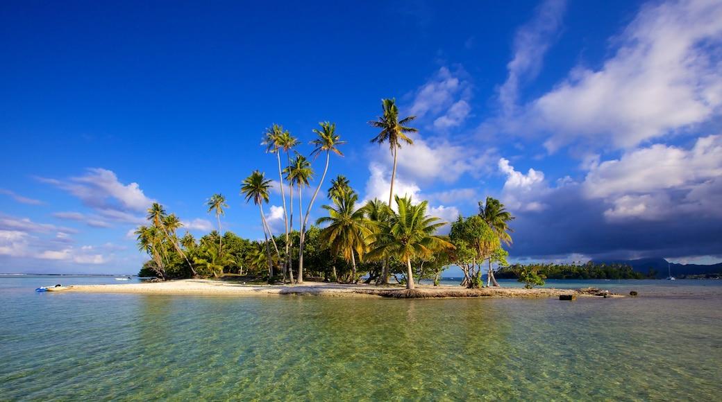 Tahiti montrant images d\'île