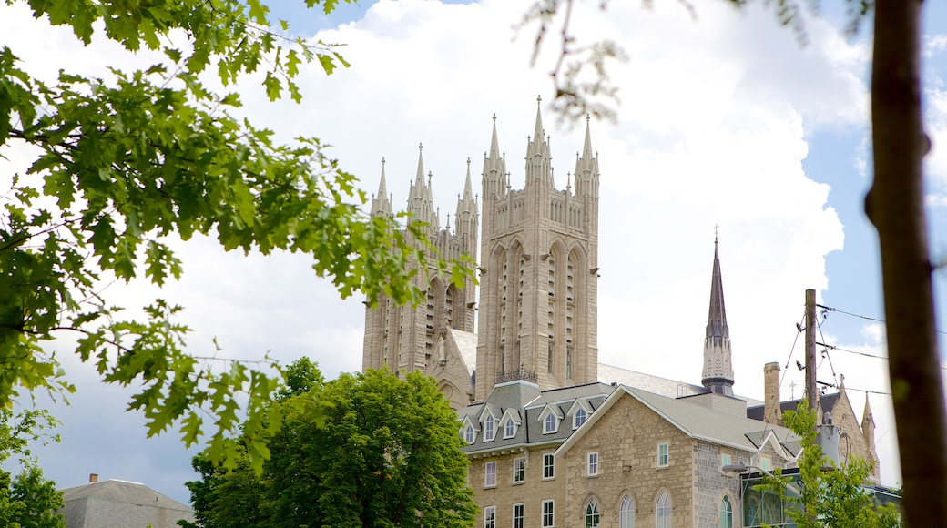 Guelph showing a church or cathedral