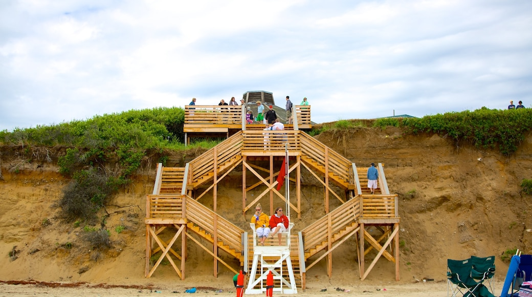 Cape Cod which includes views and general coastal views as well as a large group of people