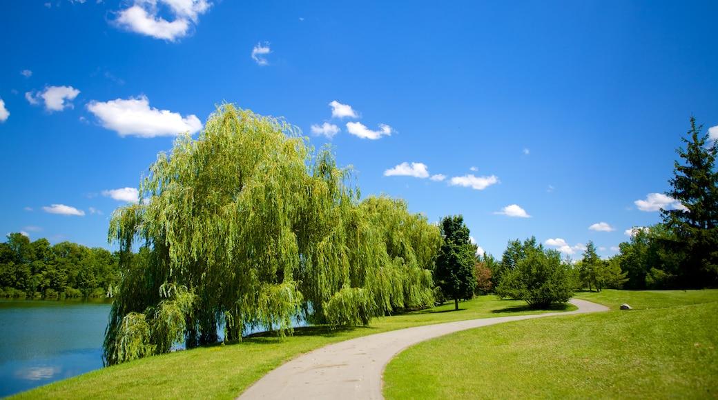 Delaware Park which includes a garden