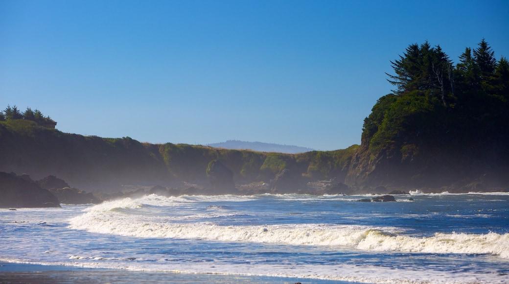 Brookings showing waves