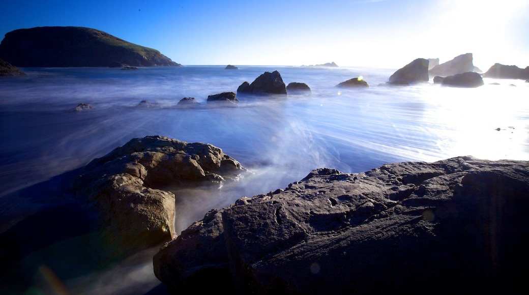 Harris Beach State Park featuring rugged coastline