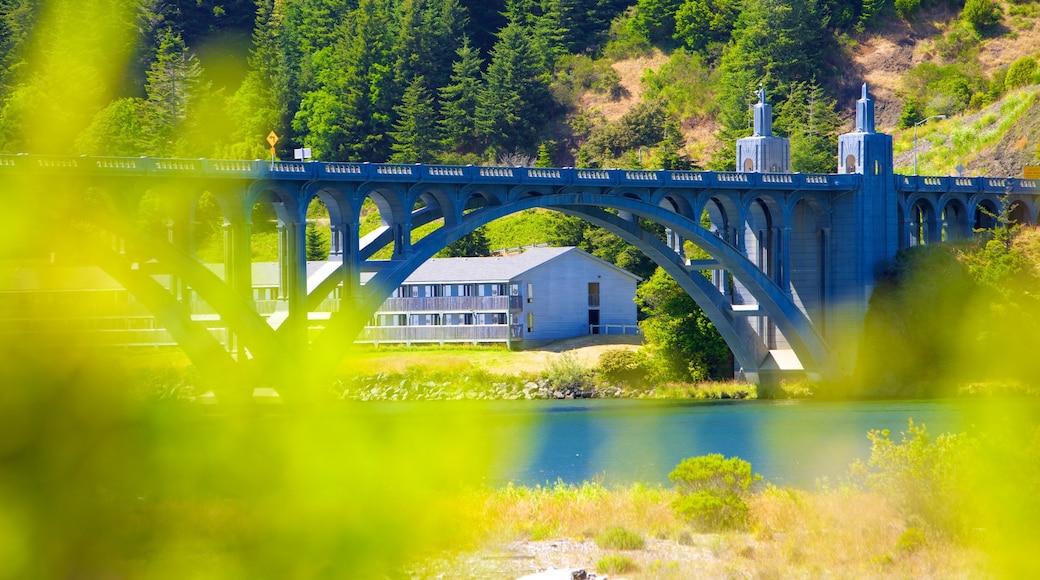 Patterson Bridge which includes a river or creek and a bridge
