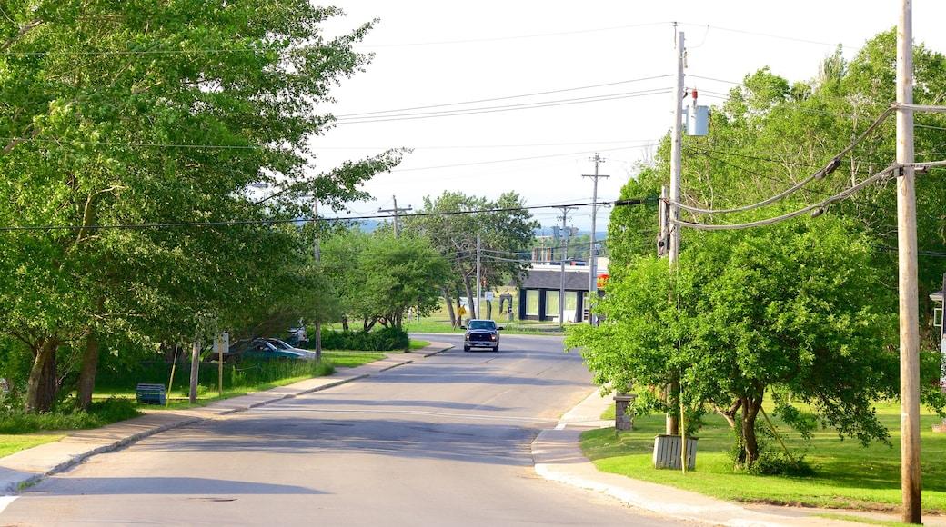 Deer Lake - Corner Brook showing street scenes