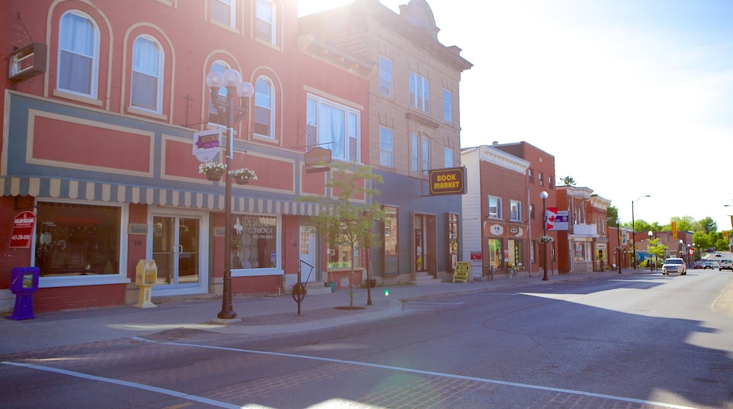 Kemptville featuring street scenes and a small town or village