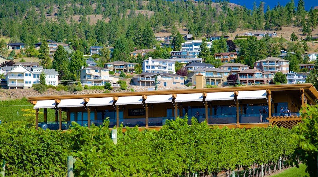 Quails\' Gate Estate Winery featuring a house and farmland