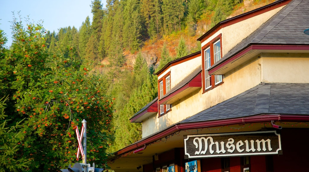 Castlegar featuring signage and heritage architecture