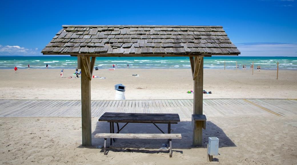 Wasaga Beach Provincial Park featuring a beach