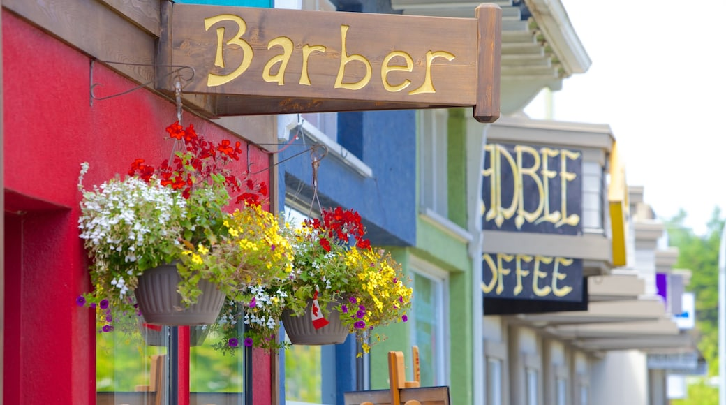 Parksville featuring flowers and signage