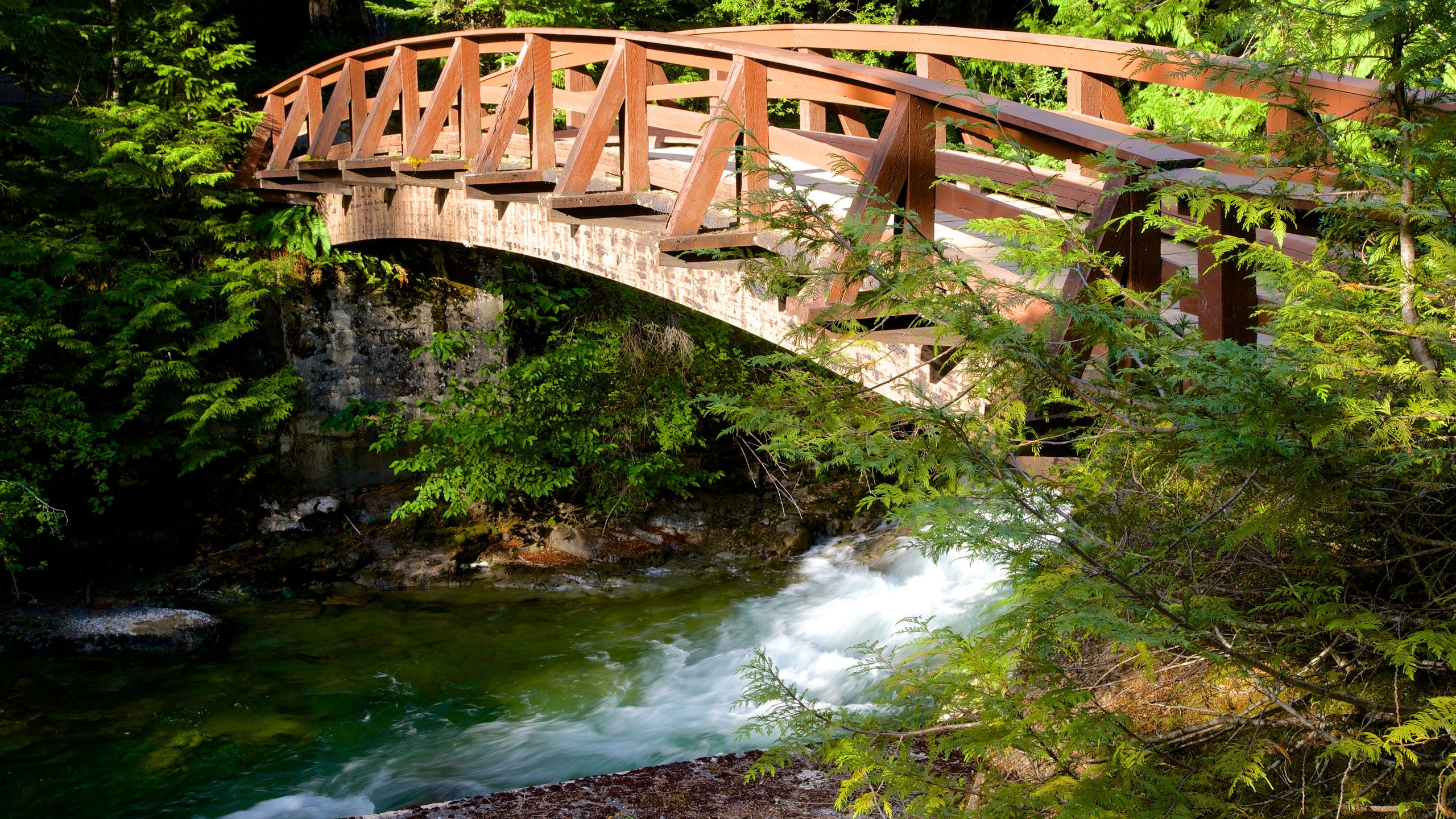 Little Qualicum Falls Provincial Park featuring a bridge and a river or creek